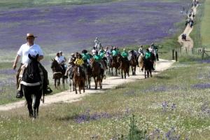 山を越え、川を渡り馬で巡礼の旅