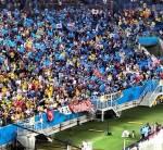 青いごみ袋で応援し、試合終了後スタンドのごみを収集した。